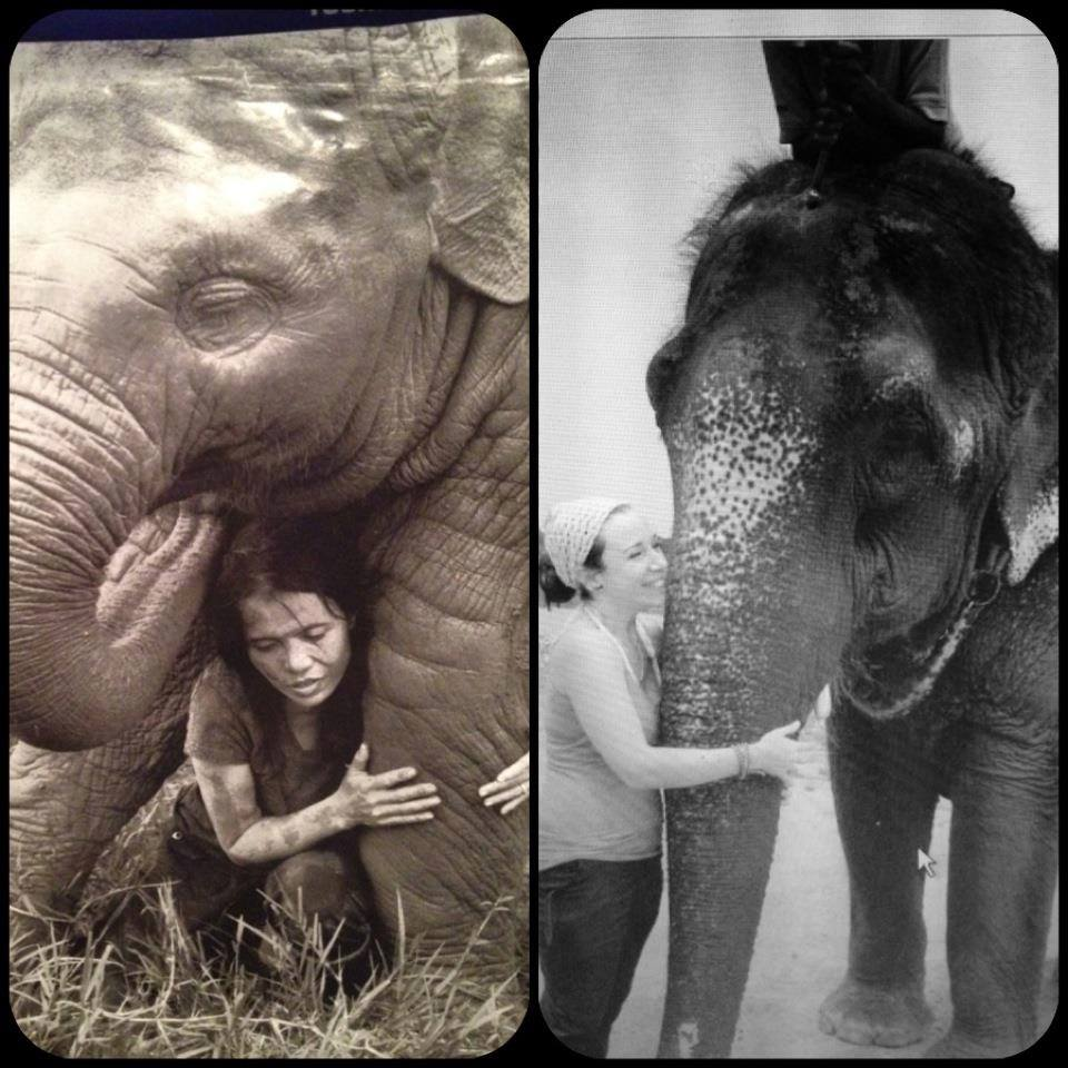 Never in a million years did I think I would get to be so close to an elephant (my favorite animal), but I got to hug and kiss and even bathe with one at Chitwan National Park in Nepal. When I cut out the photo on the left out of a magazine, I wanted so badly to be the lady in the photo. It was on my vision board for many months, maybe even a couple of years before I found myself in real life doing the same exact thing.....still makes me emotional because this was one of the most amazing moments of my life.